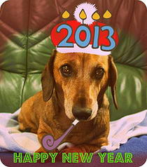 Wishing you all a very Happy and Alfie New Year 2013.